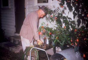 Dick HUMBKE preparing juice from fresh oranges in Florida.